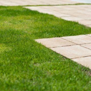 ふかふかの天然芝。緑がご家族に癒しを与えてくれます。