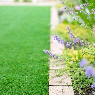 彩よい草花と人工芝でお庭に緑を。