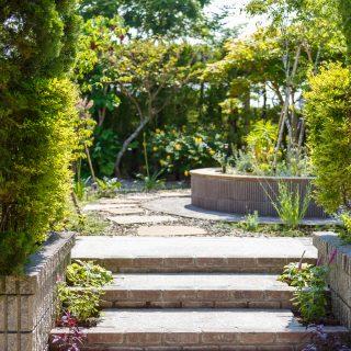 お庭の入り口からたくさんの植物が出迎えてくれます。